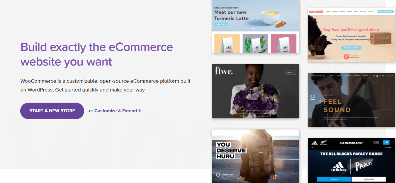 The WooCommerce home page.